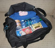 Emergency Pet Evacuation Kit - Tips for most domestic house pets for a variety of disaster situations.