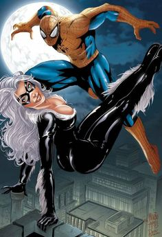 Black Cat and Spider-Man