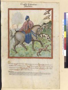 Tacuinum Sanitatis (BNF Latin 9333), 15th century