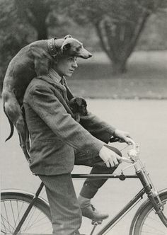 51 Ideas dogs black and white photography vintage photos I Love Dogs, Puppy Love, Man And Dog, Tier Fotos, Dog Photos, Animals Photos, Funny Photos, Vintage Photographs, Belle Photo