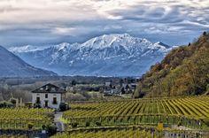 Image de Swiss Wine Promotion Oeuvre D'art, Les Oeuvres, Promotion, Mountains, Nature, Travel, Image, Switzerland, Naturaleza