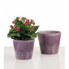 Keramický obal Bloomy violet