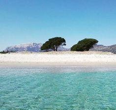 Le dune bianche di Siniscola -Mare trasparente di Sardegna - #Cerdeña - #Sardinia