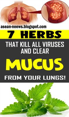 7 Herbs That Kill Viruses and Clear Mucus from Your Lungs remedies We are getting more wiped out and more debilitated . Natural Remedies For Arthritis, Natural Remedies For Anxiety, Natural Health Remedies, Herbal Remedies, Natural Cures, Flu Remedies, Natural Healing, Homemade Pimple Remedies, Pimples Remedies