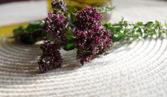 Jak zpracovat a využít oregano v kuchyni a ke zdraví. Oreganové víno proti nespavosti, oreganový ocet na zálivky ap.