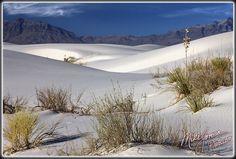 White Sands Desert, NM  this guy is pretty interesting http://www.flickr.com/people/mikejonesphoto/
