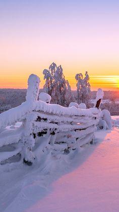 1080x1920 Wallpaper sunset, winter, fence, landscape