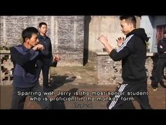 Interesting footage of xing yi, as one of the basics of yichuan/taikikenpo