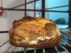 Bread, Bread, Bread by TRITICUM