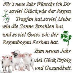 Gästebuch von Grauchen - dogSpot.de