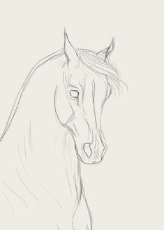 How to draw horse faces - horse faces draw - new - horse .How to draw horse faces - horse faces draw - new - horse faces draw - Create zoo animal crafts and activities, Horse Face Drawing, Horse Drawings, Pencil Art Drawings, Art Drawings Sketches, Drawing Drawing, Hipster Drawings, Drawing Animals, Horse Sketch, Equine Art