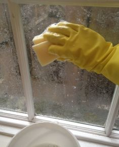 22 Home Hacks Thatll Make Renters Say Why Didnt I Know About This Sooner? 2019 The post 22 Home Hacks Thatll Make Renters Say Why Didnt I Know About This Sooner? 2019 appeared first on Lace Diy. Window Screens, Window Coverings, Diy Lace Privacy Window, Kitchen Window Treatments, Rental Decorating, Corn Starch, Home Hacks, Brushes, Diy Frosted Glass Window