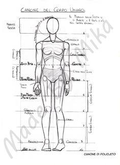 schema proporzioni del corpo umano