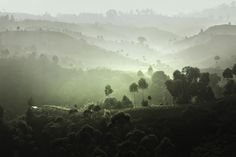 Cheerful morning  by Saelan Wangsa