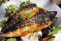 Search for a Connoisseur & Sharp's Brewery: Smoked Mackerel with Hot Beetroot and Horseradish Cream Meat Recipes For Dinner, Dinner Party Recipes, Fish Recipes, Seafood Recipes, Cooking Recipes, Beetroot And Carrot Salad, Smoked Mackerel, Meat Appetizers, Best Meat