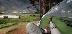 Tentsile is a suspended tree house that is portable and can be taken anywhere you decide to travel.