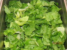 J Greene's lettuce used for their salads is the best available.
