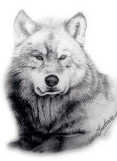 Wolf waiting