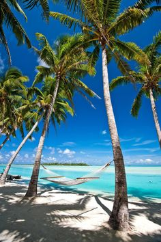 Tropical Beaches With Palm Trees Jamaica Vacation, Vacation Spots, Vacation Travel, Vacations, Wallpaper Paisajes, Places To Travel, Places To Go, Famous Places In France, Beach Pink