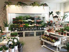 Fiorista blommor & inredning i Älta