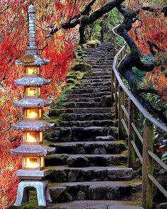 Giardino giapponese, Hakone, Japan, japana ĝardeno, Japanese Garden, japanischen Garten, japon bahçesi, jardin japonais, Tokyo, Yokohama, Японский сад