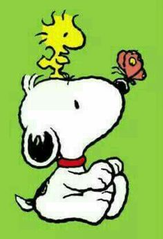 Baby Snoopy and Baby Woodstock with a butterfly Gifs Snoopy, Snoopy Cartoon, Peanuts Cartoon, Snoopy Quotes, Peanuts Snoopy, Snoopy Comics, Baby Snoopy, Snoopy Love, Snoopy And Woodstock