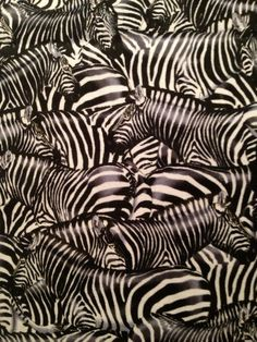 Hey, I found this really awesome Etsy listing at http://www.etsy.com/listing/110126635/timeless-treasures-packed-zebras-black
