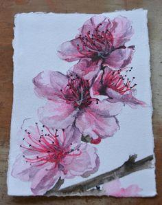 Peach Blossoms Original Watercolour Painting   Desines   madeit.com.au
