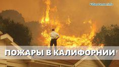 Катастрофические пожары в Калифорнии. Аномальная погода. Климатические и...
