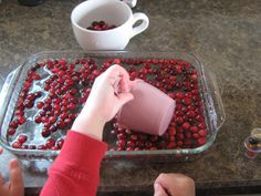 Cranberry Sink or Float Experiment/Thanksgiving Science (from Almost Unschoolers)