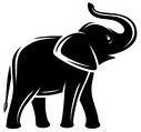 50339825 - elephant isolated set. vector animal