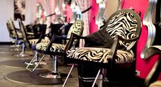 Zebra Salon Chairs-at home salon Hair Salon Interior, Home Salon, Salon Stations, Beauty Salon Decor, Beauty Salons, Salon Business, Salon Style, Cool Chairs, Awesome Chairs