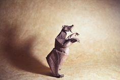 origami animals, paper, art