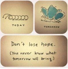 Don't lose hope!