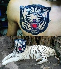 Tattoo Comparisons – Comparing Bad Animal And Face Tattoos With Real Pictures (10 Pictures)