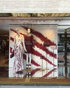WEBSTA @ yhc.m - #toryburch#hongkong#hk#hkig#daily#street#windowdisplay#feathers#cwb#causewaybay#香港#日常#銅鑼灣dont know why but this window display quite appeal to me