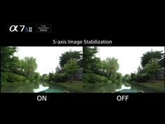 α7S II - 5-axis optical image stabilization | α | Sony