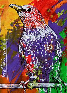 ACEO NEW Original Acrylics BIRDs Painting - Starling - 2013 by Sue Flask