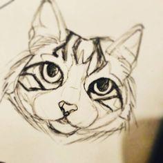 "13 Me gusta, 3 comentarios - Juliana Rojas Alvarez (@julianarojasa) en Instagram: "" . . . . . #drawing #illustration #cats #catlovers #catlady #picofday #meow #dowhatyoulove…"""