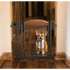 Design Studio Walk-thru Gate with Small Pet Door *** Review more details here : Furnitures that cats love