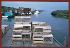 Don't worry guys, I'll build the lobster traps.
