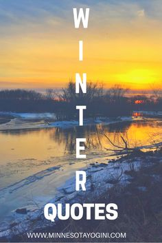 Winter, Wildlife, and Wise Words - Today I am sharing some of my favorite quotes about winter, accompanied by my photography of wildlife, and winter sunsets. I hope you enjoy and coms some inspiration and smiles! Funny Romantic Quotes, Long Distance Quotes, The Notebook Quotes, Surfing Quotes, Sunset Quotes, Winter Quotes, New Beginning Quotes, Friendship Day Quotes, Winter Sunset