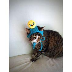Cat Dog Costume Hat with Smiley Face Blue Crochet Unique Handmade Cat... (  sc 1 st  Pinterest & Cat Dog Costume Hat with Black Pokemon Yellow Crochet Unique ...