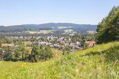 Abwechslungsreiche Rundtour zum Titisee und durch die erfrischende Waldluft zurück nach Hinterzarten. Dolores Park, Flora, Rondom, Eve, Travel, Outdoor, Tips, Freiburg, Tourism