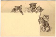Postcard Cats Six Embossed Early Unsigned Helena Maguire | eBay