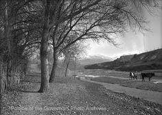 pogphotoarchives:  Nambé River Pojoaque New http://ift.tt/1VwrFnD
