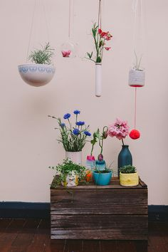 starfetti:  (via stefanierobiningram) Hanging Flower Pots, Hanging Plants, Indoor Plants, Indoor Garden, Garden Plants, Planting Flowers, Frankie Magazine, Kitchen Gardening, Home And Garden
