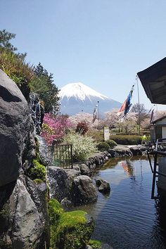 Japan's Spring Landscape: Sakura, Koinobori Carp Streamers and Fujisan - Mt. Fuji will be added to the UNESCO world heritage.|富士山