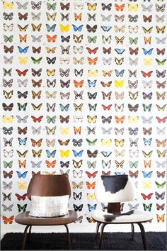Butterfly wallpaper - small accent wall or ceiling in girl room. Paired with a soft solid color. Butterfly Wallpaper, Kids Wallpaper, Wallpaper Panels, Wall Wallpaper, Pattern Wall, Just Kids, Wall Finishes, Inspiration Wall, Home And Deco
