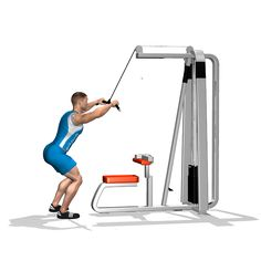 STRAIGHT ARM PULLDOWN INVOLVED MUSCLES DURING THE TRAINING LATS